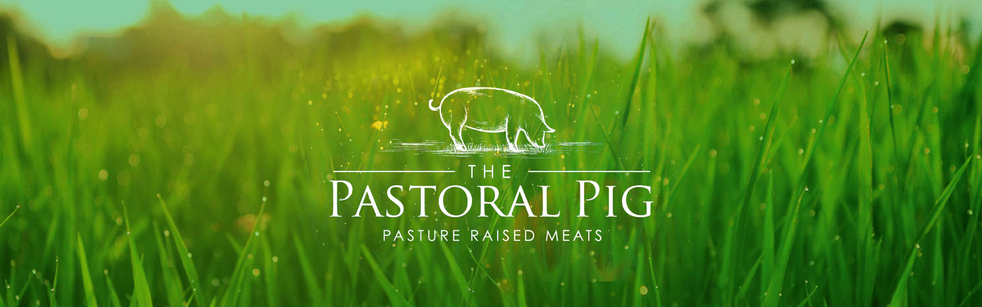 Grass for passture raised meats